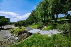 South Hill Fairway Balvanera